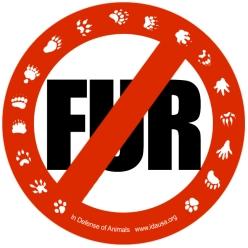 no-fur